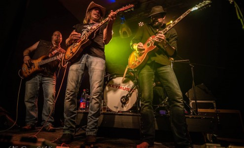 Zak Perry & the Beautiful Things (USA) Texas blues