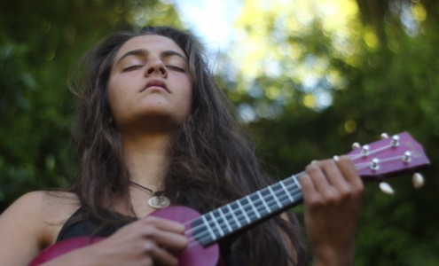 Flow & Co (B) chansons folk